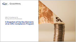 White Paper - A Snapshot of the Key Elements of an AML Compliance Program-1